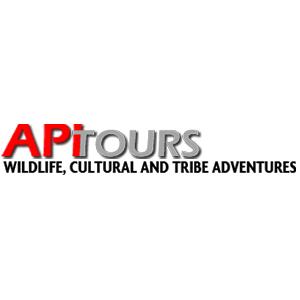 API tours Bali